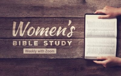 Ladies Zoom Bible Study